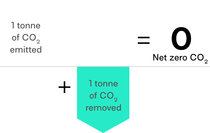 Carbon removal offsets